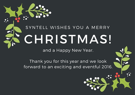 Syntell wishes you a Merry Christmas and Happy New Year!